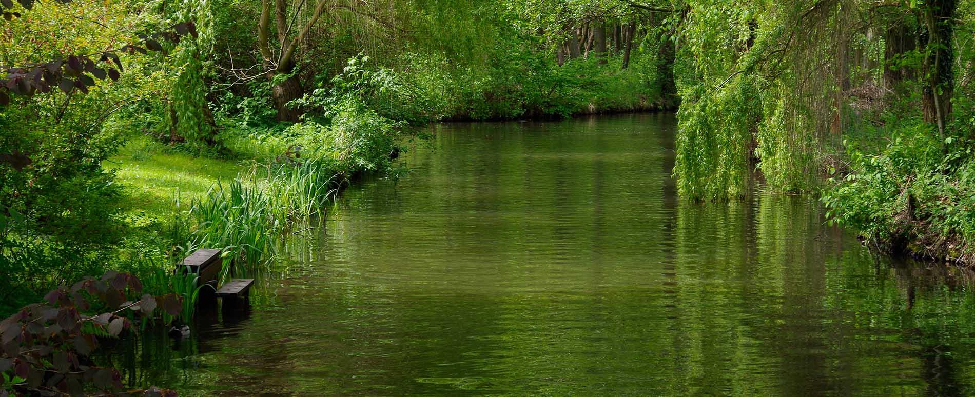 Fließ in Burg Kauper