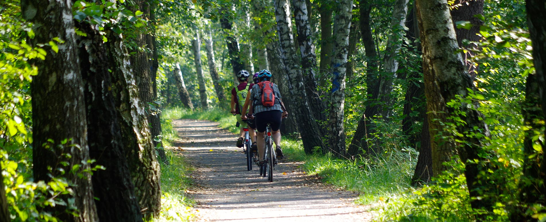 Radwege im Spreewald   Übersicht der Fahrradtouren