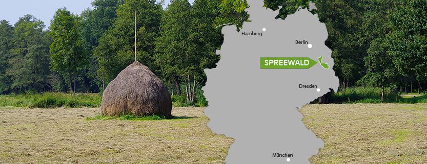 Wo liegt der Spreewald?