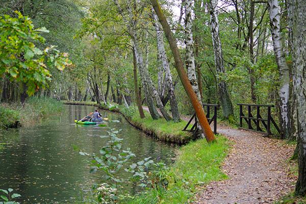 Herbst paddeln im Spreewald